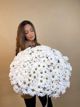 Букет из кустовой хризантемы  - купить цветы и аксессуары в интернет-магазине Дом цветов
