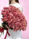 Санти - купить цветы и аксессуары в интернет-магазине Дом цветов