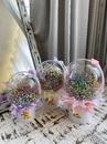 Bubbles  - купить цветы и аксессуары в интернет-магазине Дом цветов