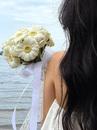 Wonder - купить цветы и аксессуары в интернет-магазине Дом цветов